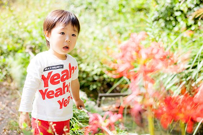 赤いお花に興味を持つ男の子