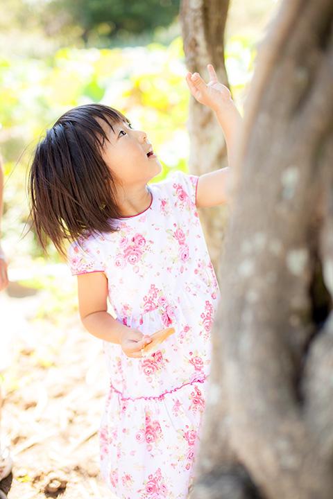木の上に何か見つけたお姉ちゃん