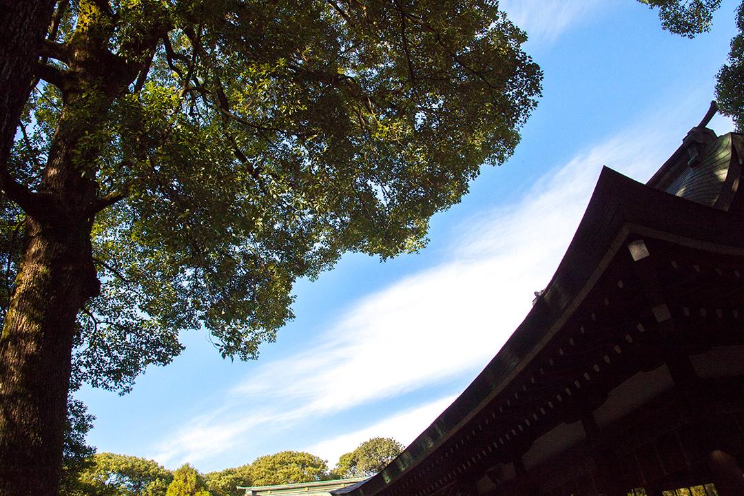当日の空は見事な晴天
