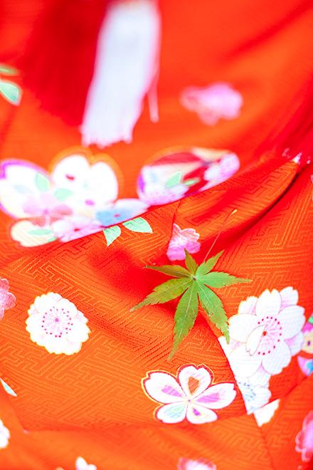 赤いお着物と緑のもみじの葉