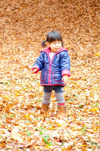 落ち葉の中を歩く女の子