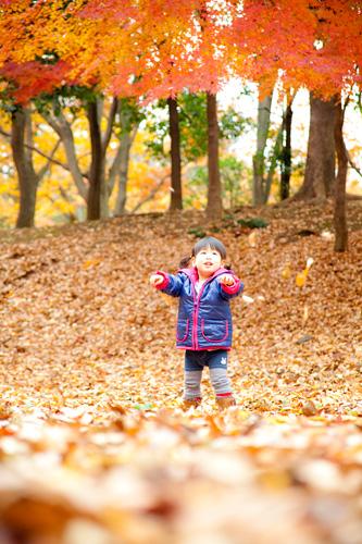 落ち葉の中で遊ぶ女の子