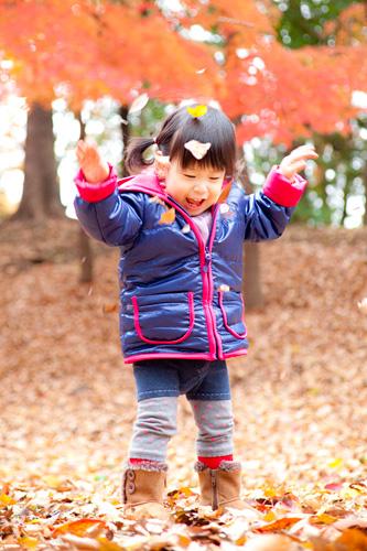 舞う葉と戯れて遊ぶ女の子