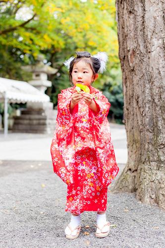 紅葉している葉っぱを集める女の子