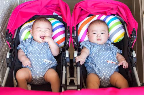 ベビーカーに乗った双子の男の子