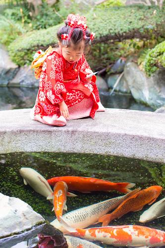 鯉を呼ぶ女の子