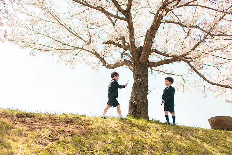 桜と枝で遊ぶ新一年生
